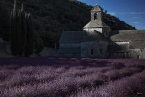 Abbey Near Gordes, Provence France